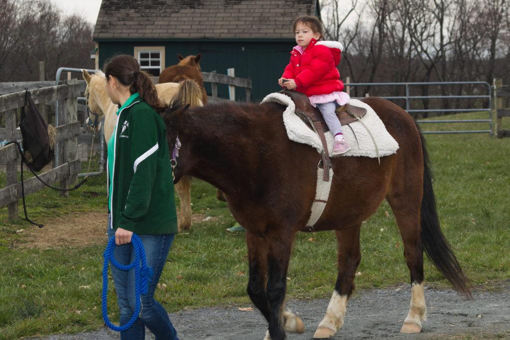 Stella on Horseback